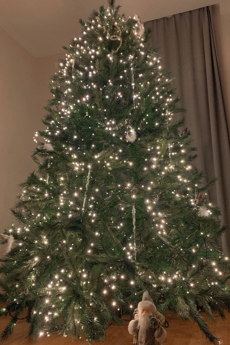 ლიკა კვარაცხელია ნაძვის ხე